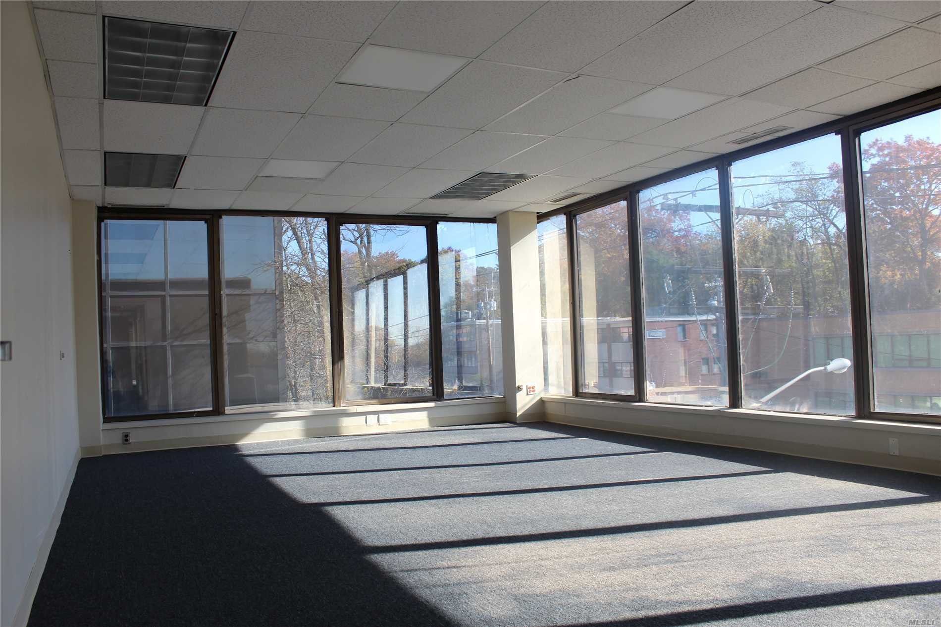 Commercial Lease Northern Boulevard  Nassau, NY 11021, MLS-3080280-6