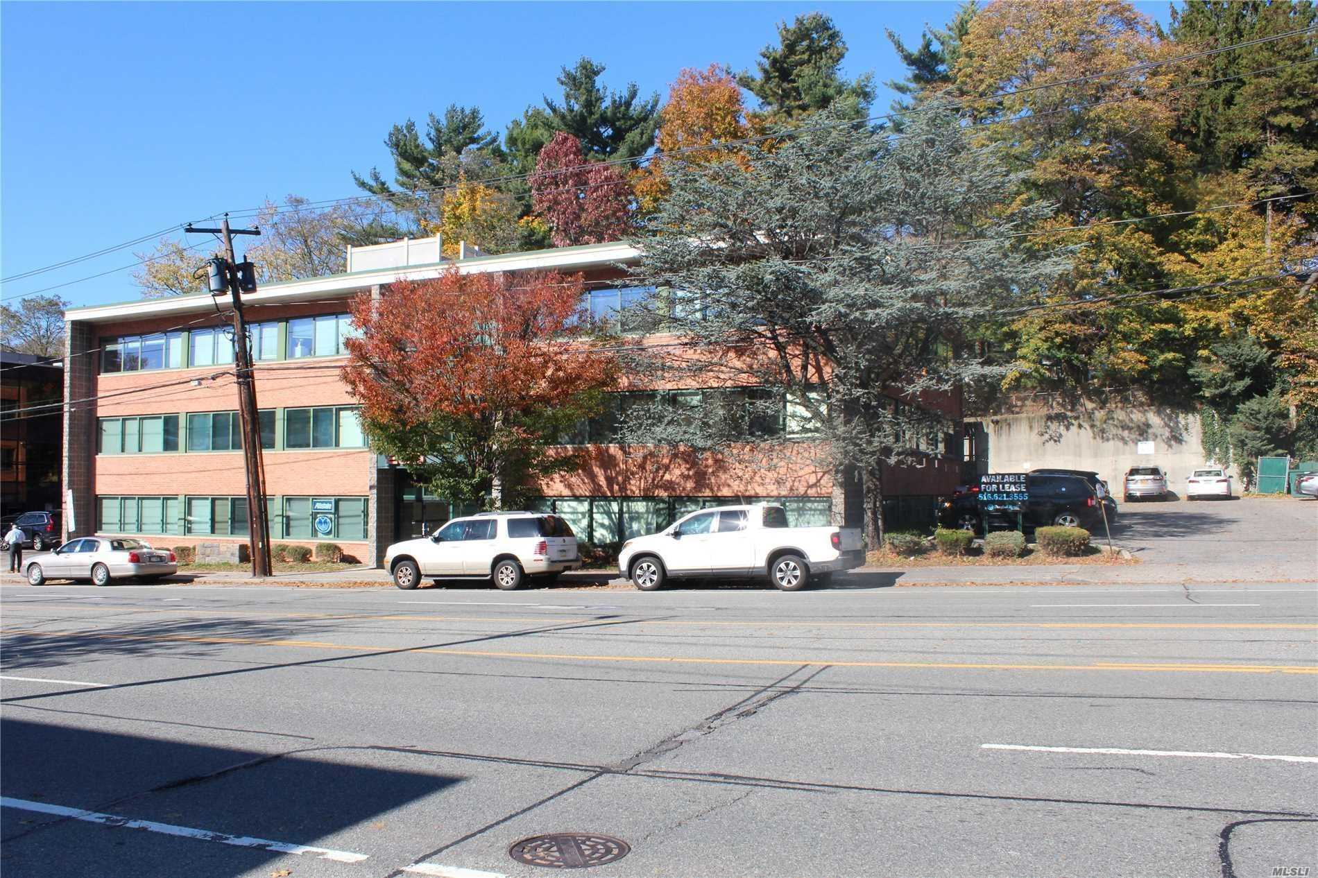 Commercial Lease Northern Boulevard  Nassau, NY 11021, MLS-3205845-2