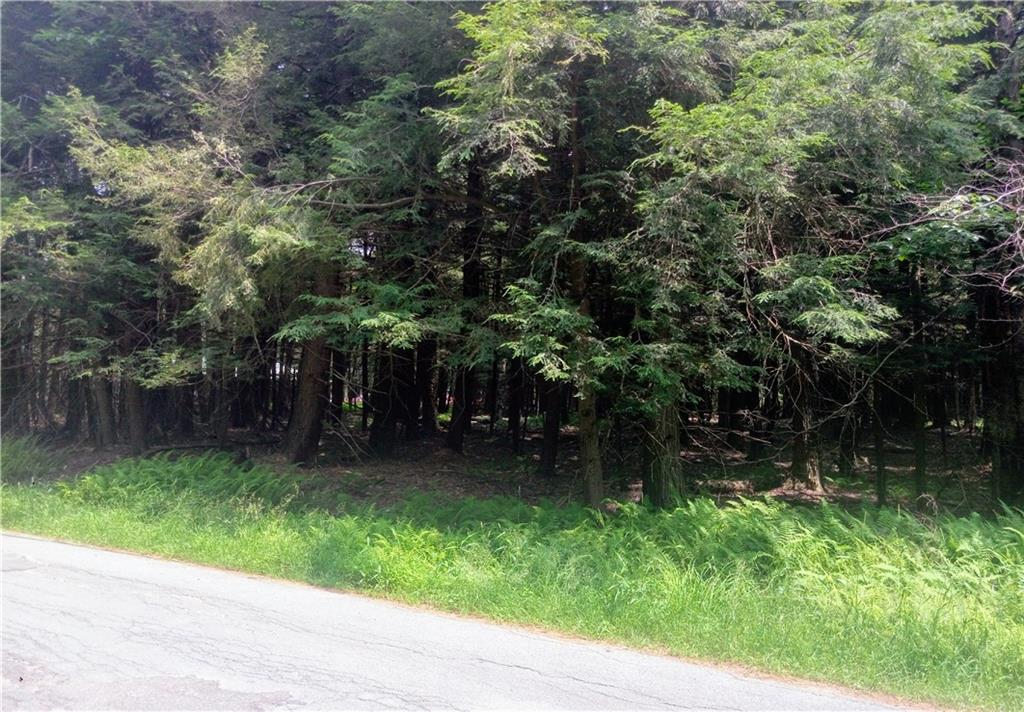 TBD Old Tacy, Bethel, New York 12720, ,Land,For Sale,Old Tacy,H4220529