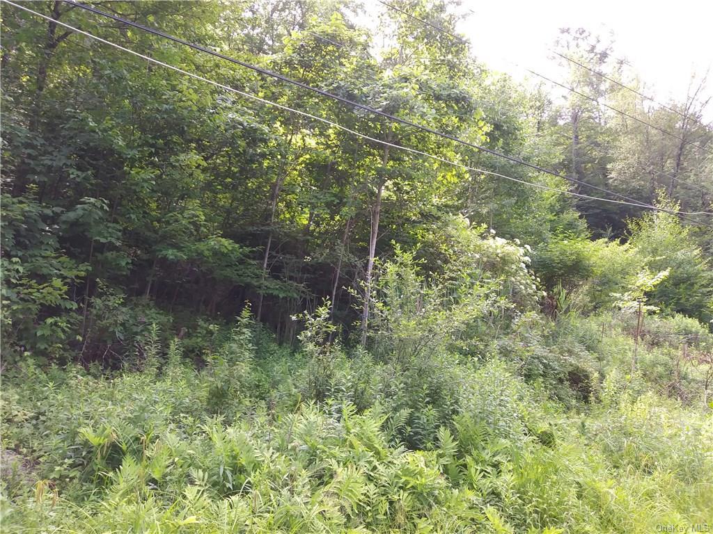 Woodland Drive, Neversink, New York 12788, ,Land,For Sale,Woodland,H4737358