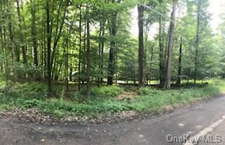 Ozark Trail, Bethel, New York 12720, ,Land,For Sale,Ozark,H4737382