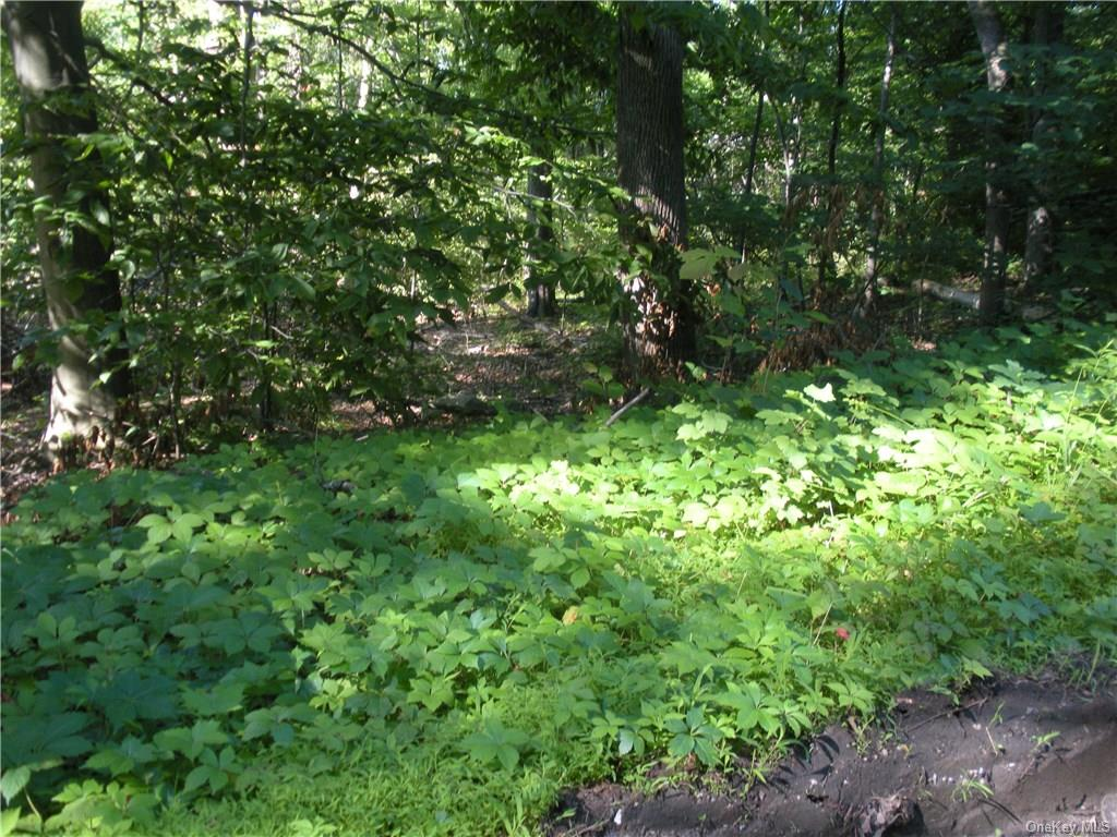 Walker Valley Road, Mamakating, New York 12566, ,Land,For Sale,Walker Valley,H4830405