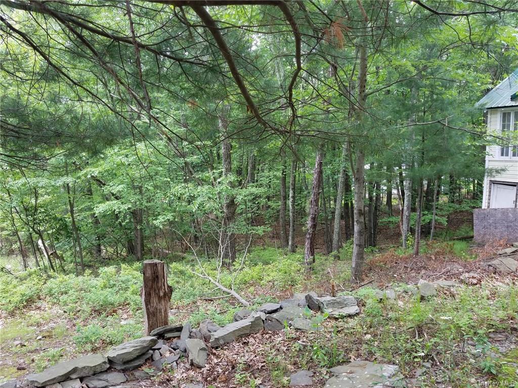 Single Family Stoney Trail  Sullivan, NY 12790, MLS-H4833488-19