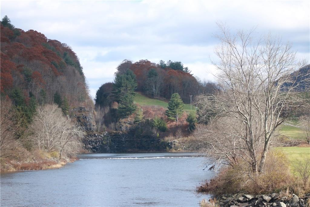 River Road, Colchester, NY 13755