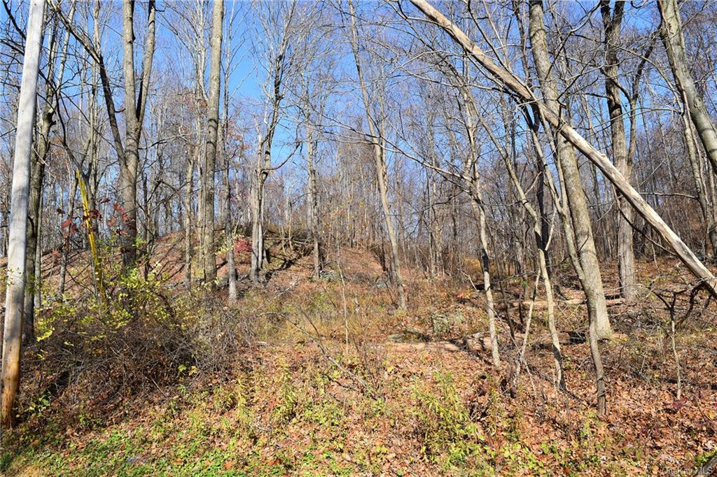 Cold Spring Road, Clinton Corners, NY 12514