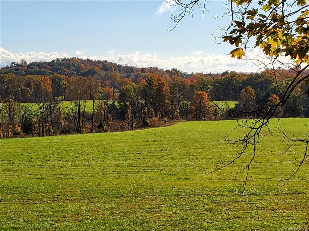 119 Augusta Savage Road, Saugerties Town, NY 12477