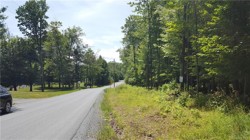 Co Hwy 73, Bethel, New York 12783, ,Land,For Sale,Co Hwy 73,H6014050
