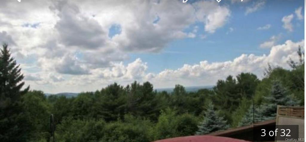 Sky View Drive, Stamford, NY 12167