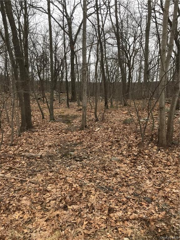 15 Rose Hill Road, Warwick Town, New York 10950, ,Land,For Sale,Rose Hill,H6022231