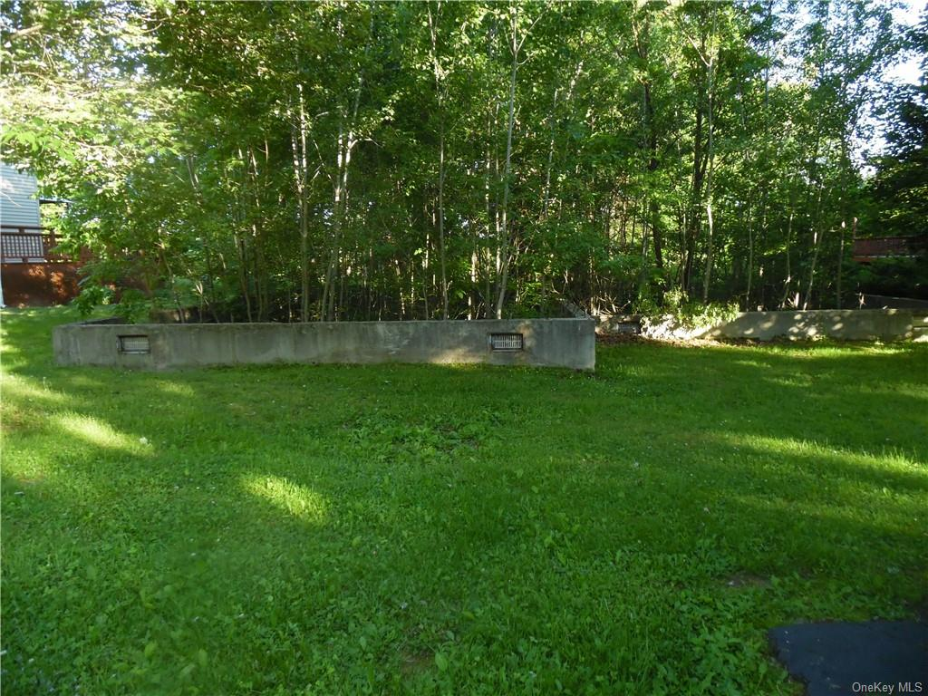 51 Clearwater Drive, Thompson, New York 12701, ,Land,For Sale,Clearwater,H6048231