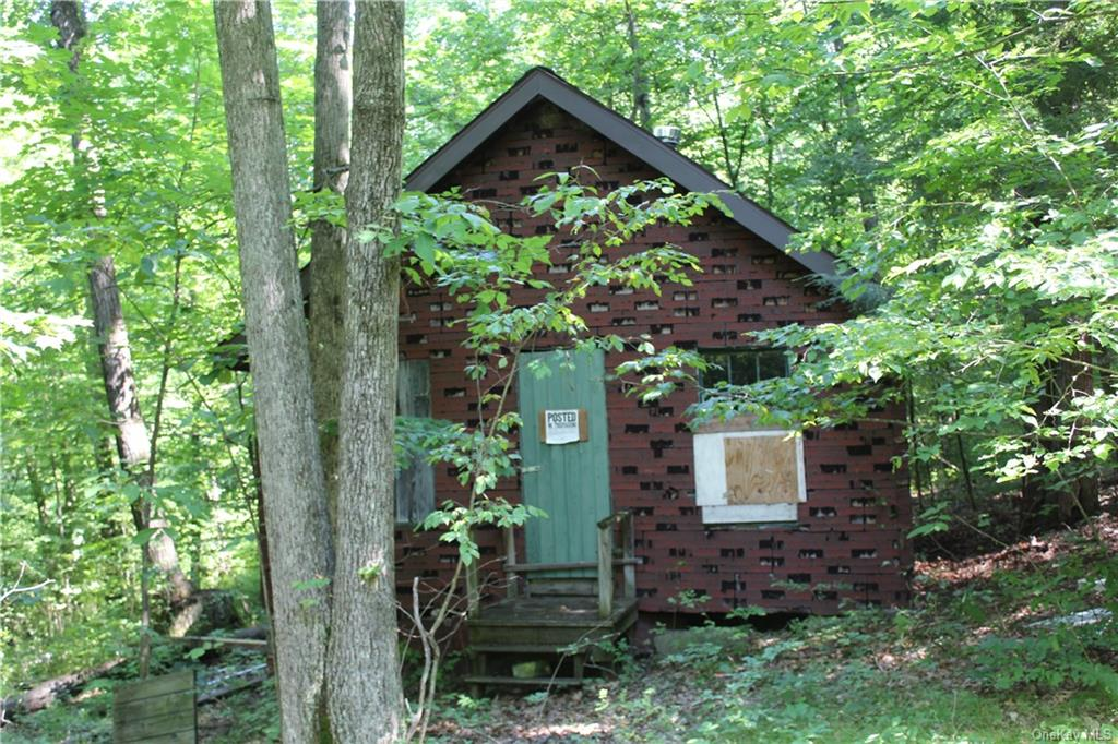 Single Family in Out Of Area Town - Harpur Hill Road  Out Of Area, NY 13813