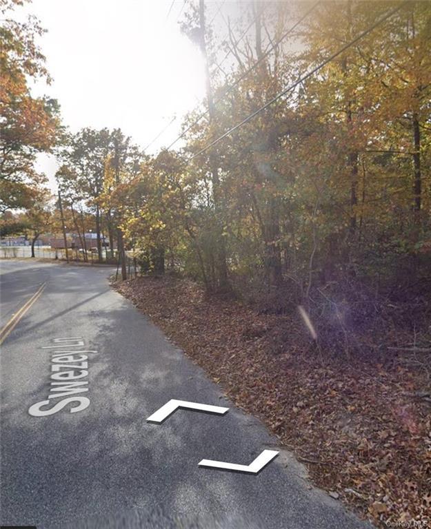 19-212 Swezey Lane Out of NYC Middle Island NY 11953