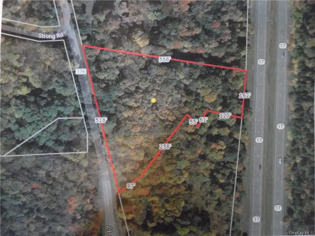 Old Route 17, Ferndale, NY 12734