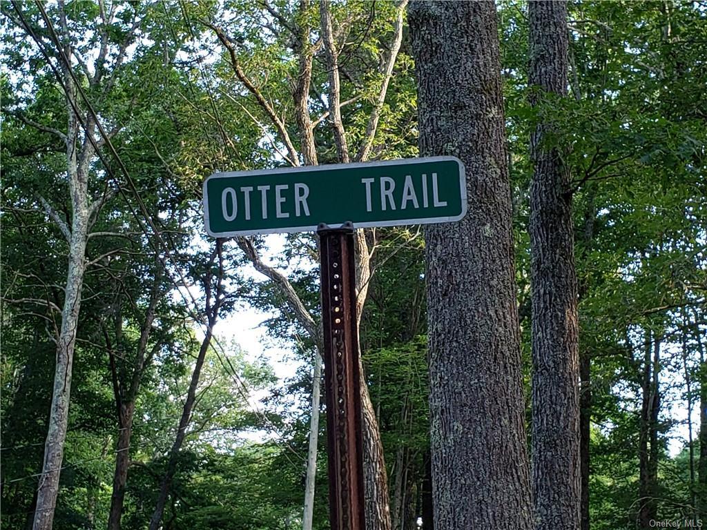 Otter & Mohawk Trail, Lumberland, New York 12737, ,Land,For Sale,Otter & Mohawk,H6063420