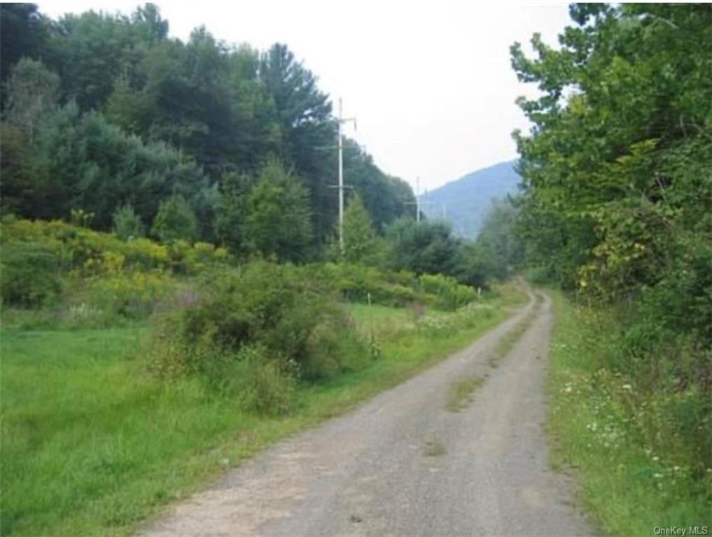 Timber Ridge Road, Shandaken, NY 12480