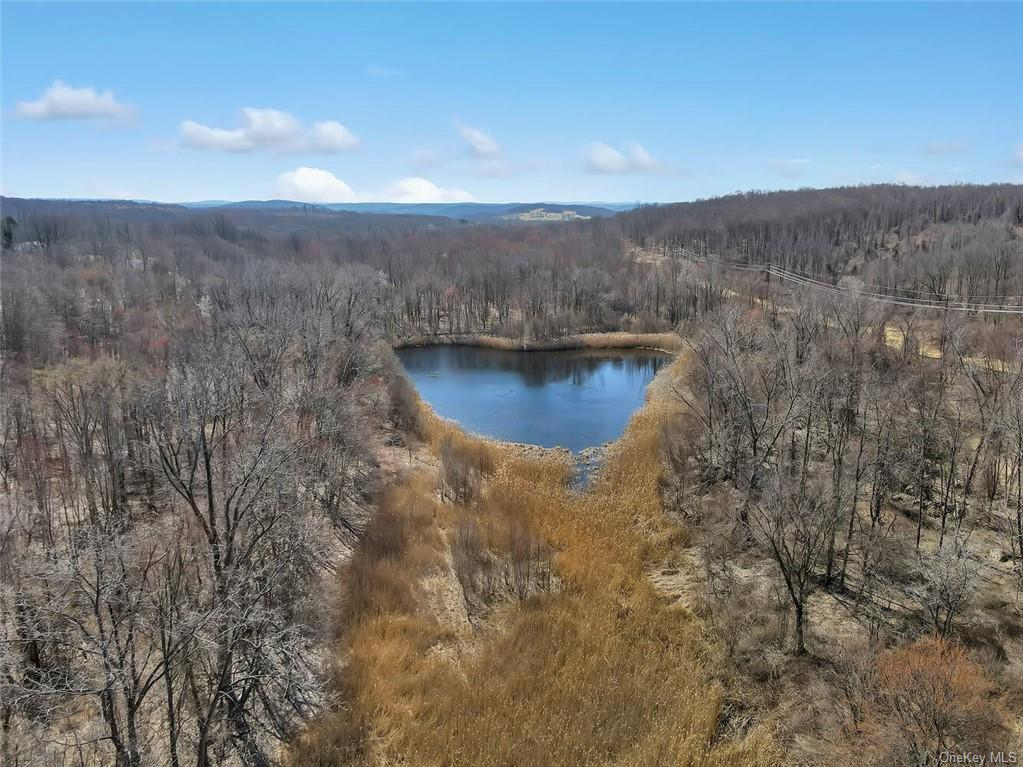 ATTENTION BUILDERS! 91.3 acres in Putnam county! In today's market, this previously approved subdivision makes for a compelling value proposition. The previous plan allowed for a 50 unit condominium project. 72.76 acres zoned 4A, 17.78 acres zoned R10 plus .726 acres zoned R10. Be sure to watch the video! Taxes listed is total of all three lots.