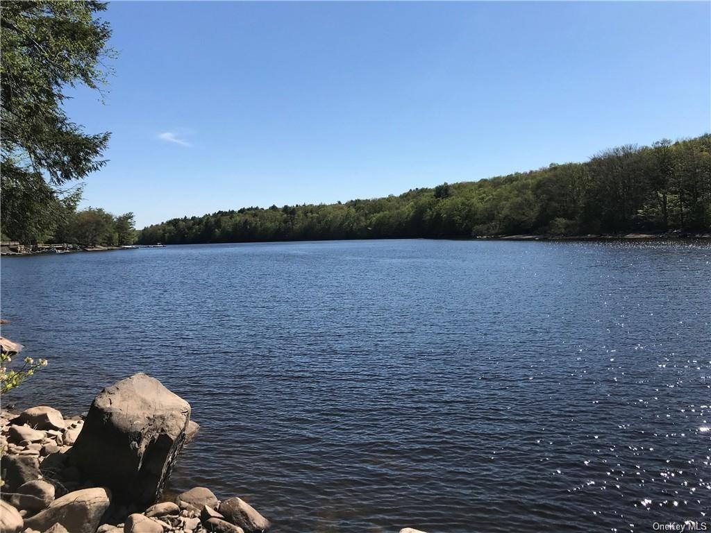 Property for sale at 195 Lake Shore Drive, Thompson,  New York 12701