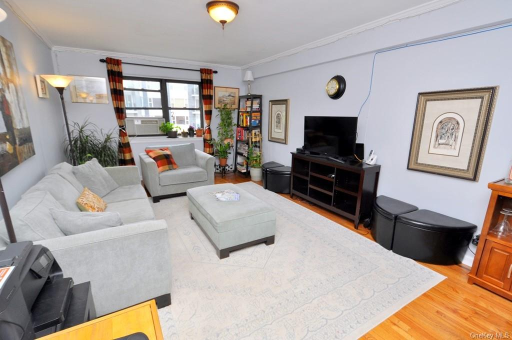 Large Sunny living room has crown molding, hardwood floors and opens to the dining room.