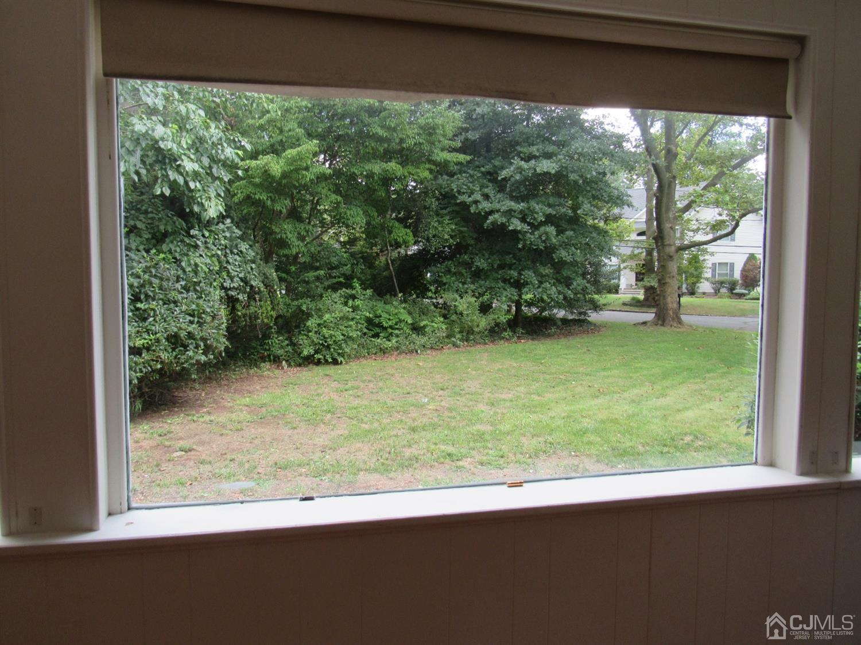 Side Yard View