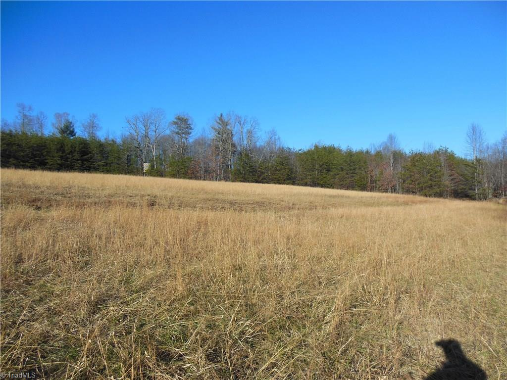 54 +/- acres with nice creek on the western boundary. The land lays fairly well and could be cleared for pastures or crops, or build a home with lots of privacy. Two open fields, two of about two acres, and one about three acres. Lots of recreational possibilities. Part of a larger tract. Buyer to survey. Tax value and taxes based on full parcel. More acreage available. No singlewides.