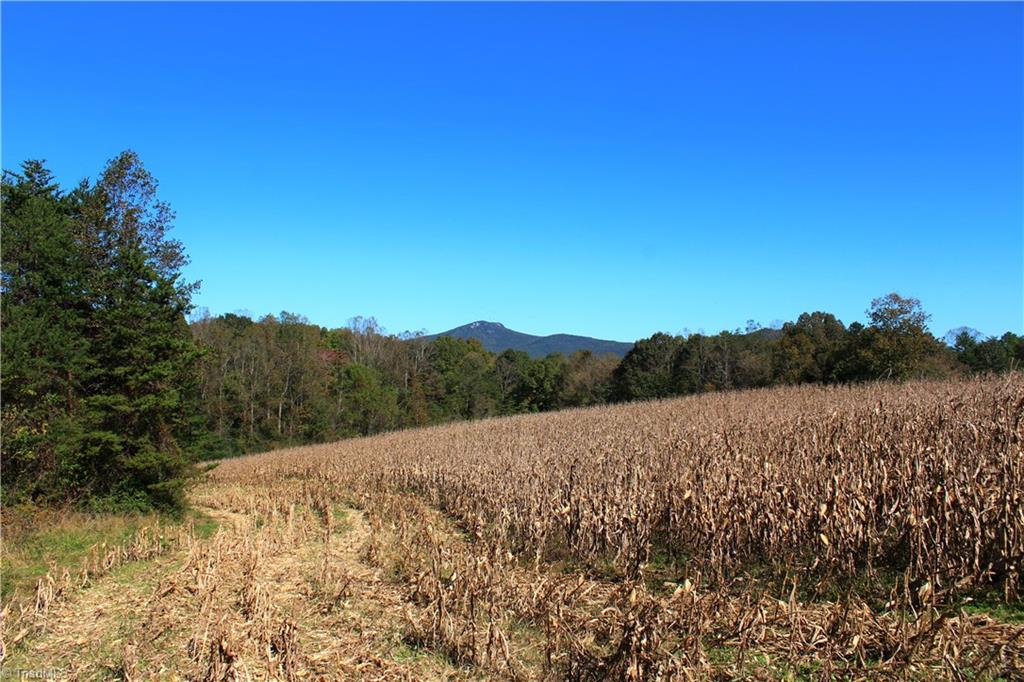 Beautiful tract of land with over 1500 ft. of road frontage on Bradley Rd. Approximately 10-12 acres cleared with view of both Pilot Knob and the Sauratown Mtns. Big bold stream dissects the land and the land adjoins the watershed lake in Pinnacle. Nice boundary of hardwood timber. Great hunting and recreational tract of land or come build your dream home on one of the beautiful building sites. No restrictions. Farm and timber deferment use value in place.