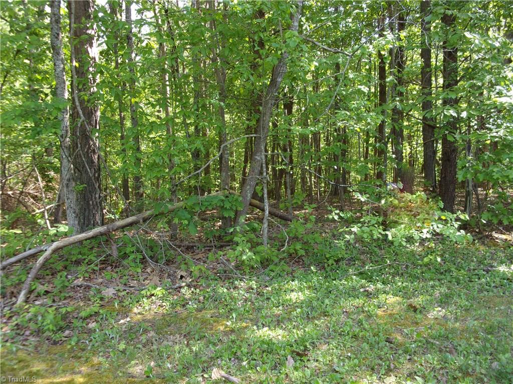 Reduced! Excellent opportunity for investors or builders, +/- 14.85 acres located in great area, wooded acreage, stream on property, joins well established neighborhood, also has access off of Maverick