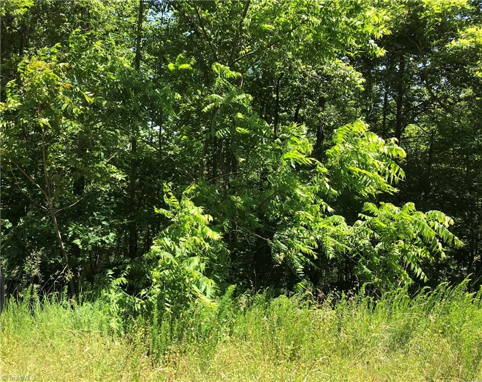9.927 acres per recent survey, wooded, no restrictions, approx 1346 feet of road frontage