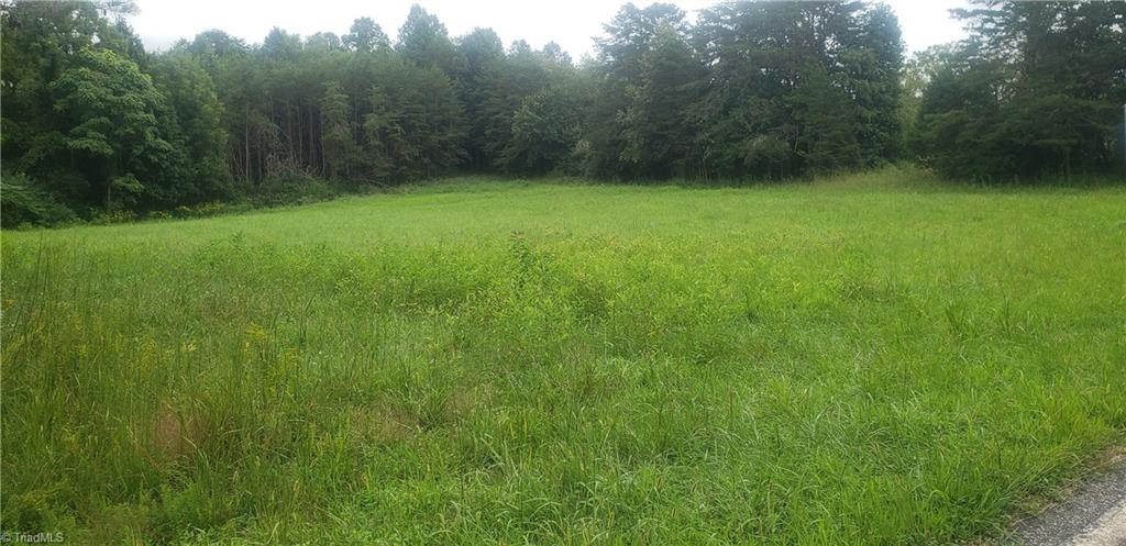 Grassy meadow at front of property - perfect for your homesite. Woods behind then it thins out along nice creek that runs along back boundary. New Survey completed.