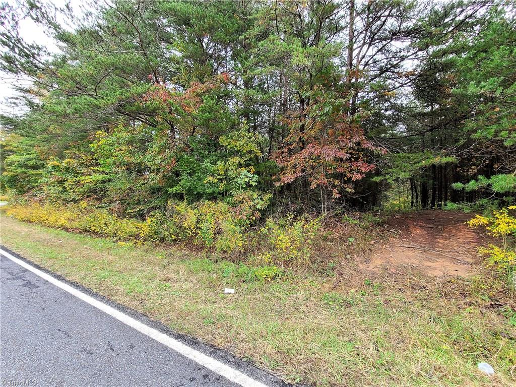 Nice tract of land to build on or put a home on.  Good building site toward the middle. Land rolls nicely.