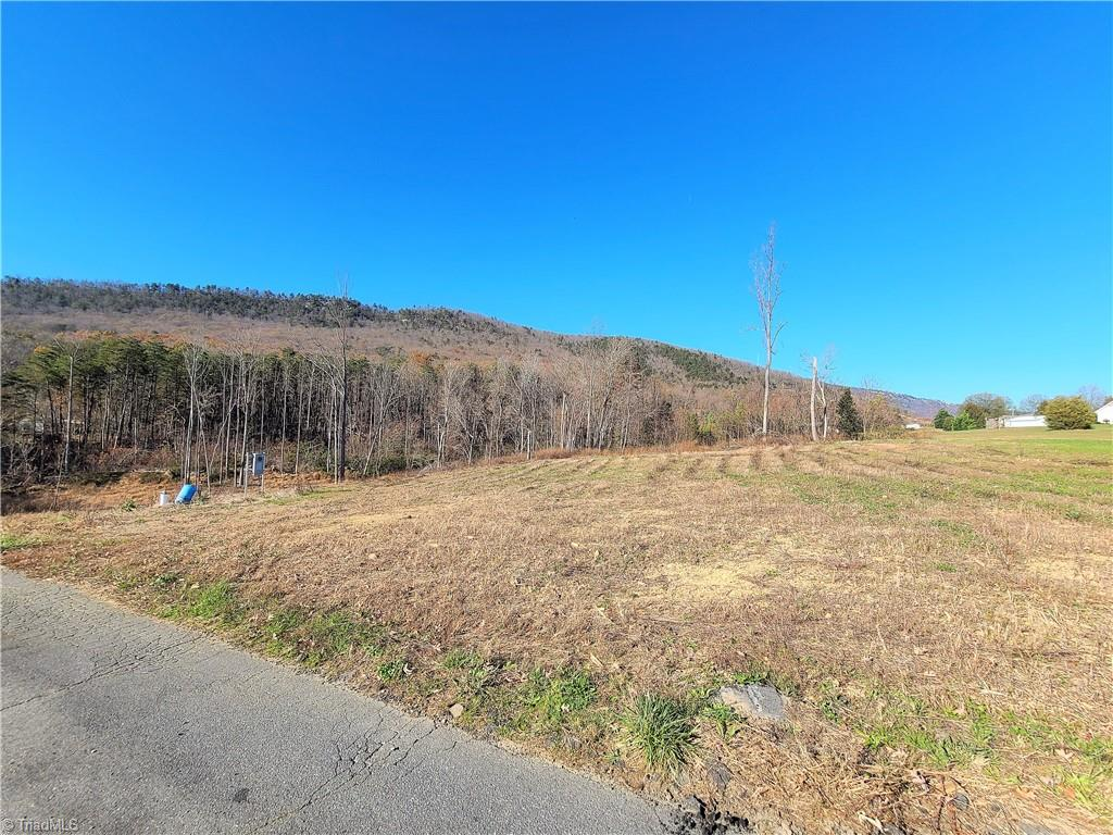 Mountain views at its best!  Almost 2 acres with up close Sauratown Mountain View and has a creek running through the property.  Land has been cleared and is ready to build your mountain home.  Property has well on property and has been perked for a 3 bedroom home.  All the work has been done and all this needs is your house plans!