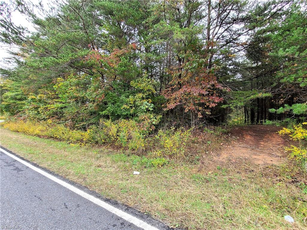 20 Acres wooded land, was timbered approximately 15 years.