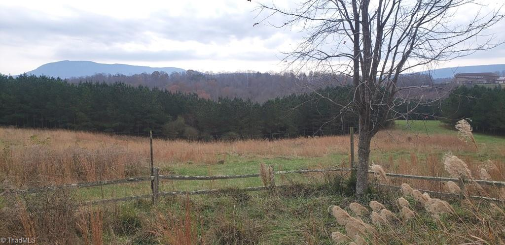 Stunning views of the Sauratown Mountains and Pilot Mountain in the distance. Imagine a weekend retreat, hunting, hiking, exploring with room for extended family to enjoy.  Early 20th century rustic log cabin with front porch to take in the views of the rolling acreage, wildlife and fields of lavender. Split rail fence encloses yard around the cabin with some fruit trees, wildflowers, spring bulbs and large patches of native milkweed. Hike down to the bold creeks. Usable barn with electricity. 37 ac of mature hardwood timber of yellow poplar, oak and hickory plus 21 acres of mixed pine and hardwoods. Approx 59 acres of managed loblolly pines planted in 2007. Specialty trees include 2 Chinese Chestnuts, 3 pecan, 1 black walnut, 1 pear and 3 apple. Property consists of 5 parcels.