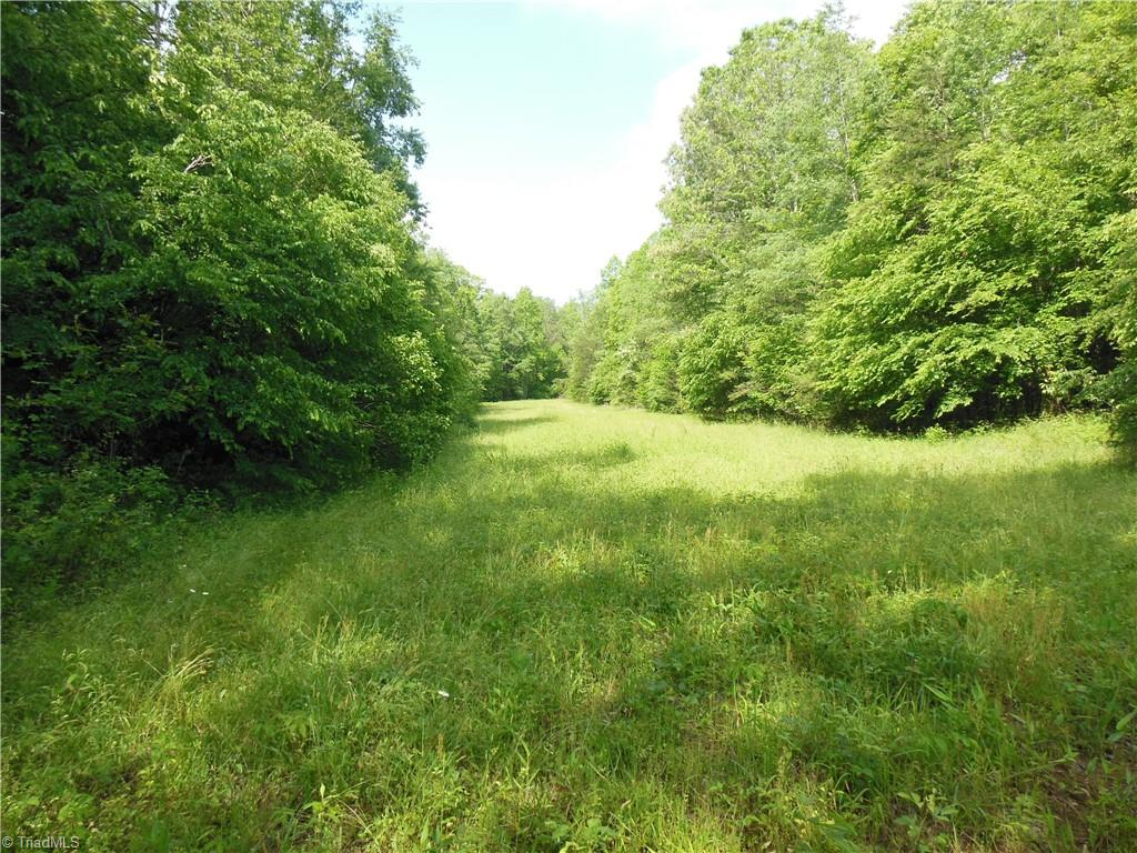 Secluded tract just minutes from King and Winston Salem. Old home place with some abandoned buildings. Good topo. Stream runs through the property and a smaller stream runs along the north border. Approximately 1 acre of cleared bottom land. Great property for mini farm. Taxes paid are for the deferred amount. Call listing agent for more info.