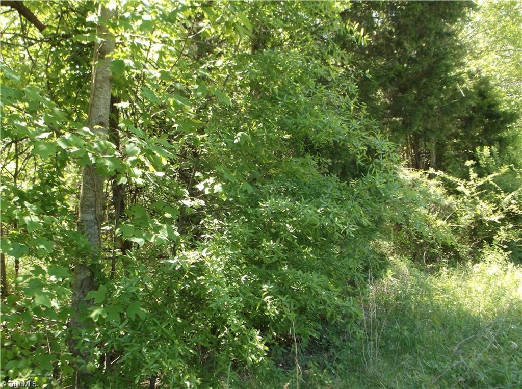 Nice wooded land perfect for building your dream home, creek on property and back property is in flood zone, great location within minutes to all amenities, +/- 10 acre tract will be surveyed off larger tract, buyer to survey