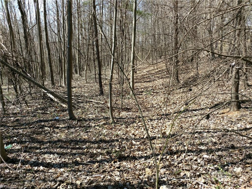 2 acre tract of land with no restrictions. Priced to sell!