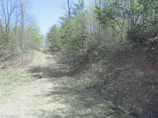 0 Green Point Lane, Boomer, North Carolina 28606, ,Land,For Sale Triad MLS,Green Point,1019696