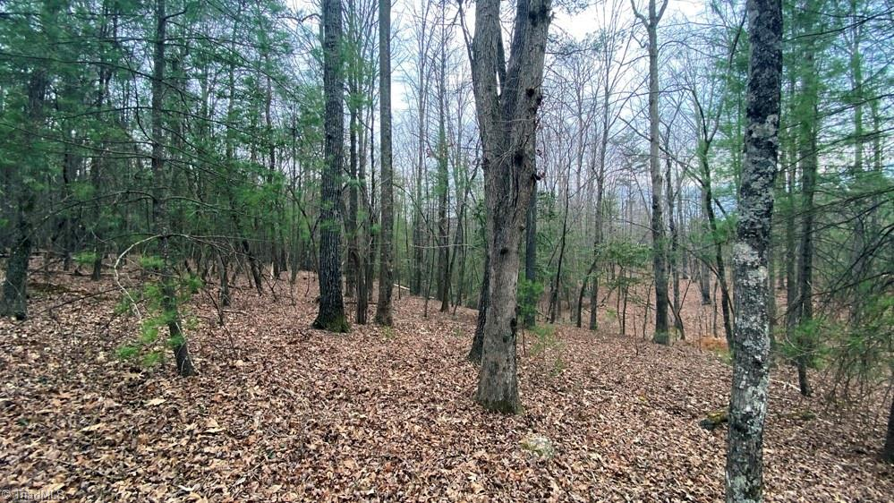 0 Peachtree Lane, Hudson, North Carolina 28638, ,Land,For Sale Triad MLS,Peachtree,1019840