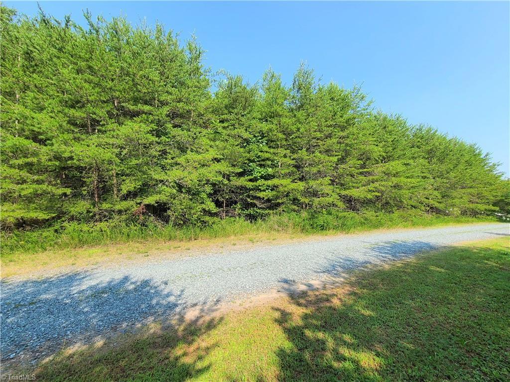Nice 1 acre tract perfect for a modular or Doublewide.  Tract is wooded but ready for you to make it what you want.  Tract will need well and septic. Nice country setting close to Pilot Mountain.