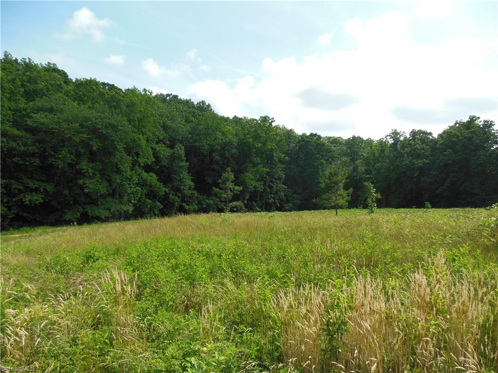 Nice tract and building site on dead end state road. Cleared on the front and wooded on the back. Stream runs through the property along the back. Close to Hanging Rock state Park and the Dan River. 30 minutes to Winston Salem. Could be a nice mini farm. Deed restriction will be added. No single wide mobile homes.