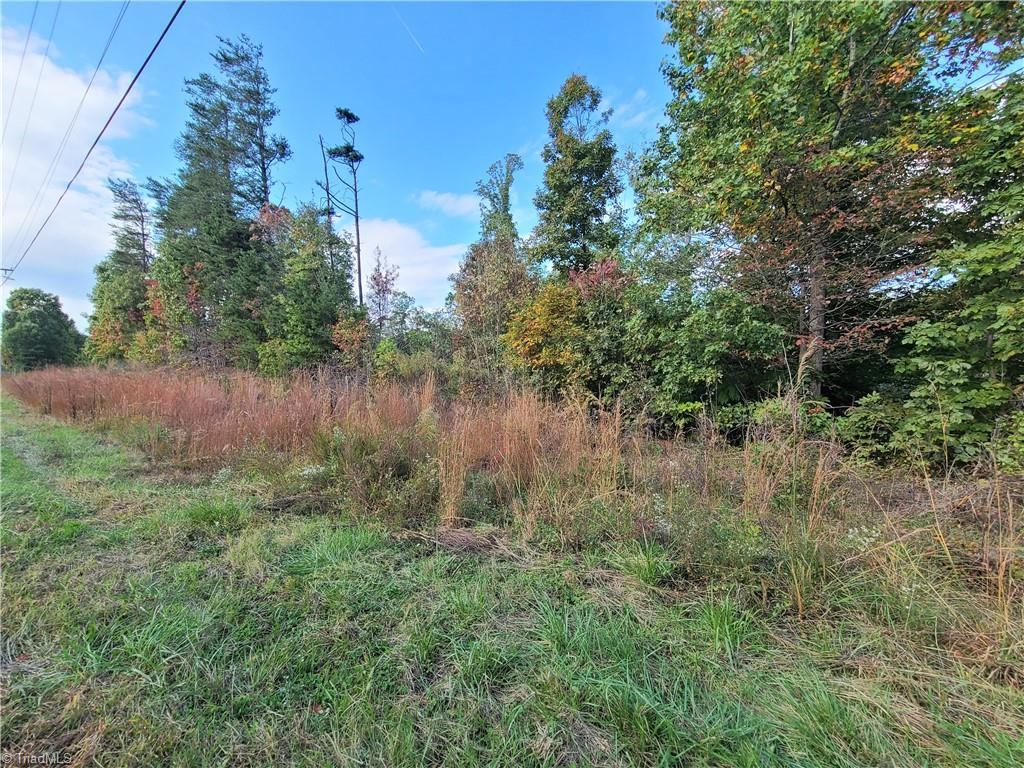 Nice 2.65 acre tract in the country just outside of Pilot Mountain. Property has over 400 foot of road frontage with no deed restrictions. About 1 acre was cleared and has a perfect home site.  Open to manufactured or Modular. Owner is having perk permit done.