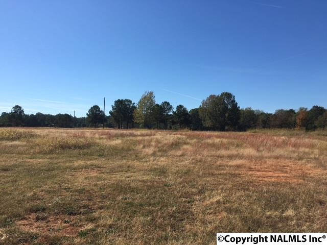Photo of home for sale at Highway 67, Priceville AL