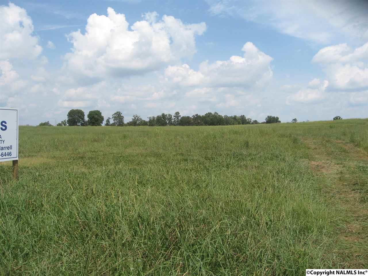 Photo of home for sale at 3.82 acres Orchard Street, Huntsville AL