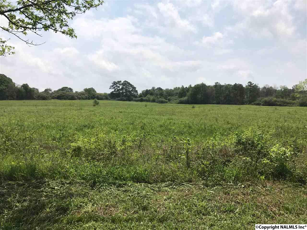 Photo of home for sale at 621 Lee Holcomb Road, Boaz AL