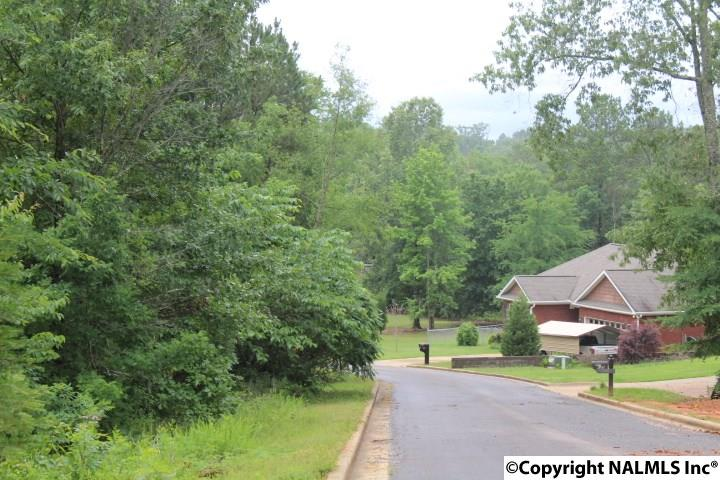 Photo of home for sale at 30 Taylor Ridge Road, Leesburg AL