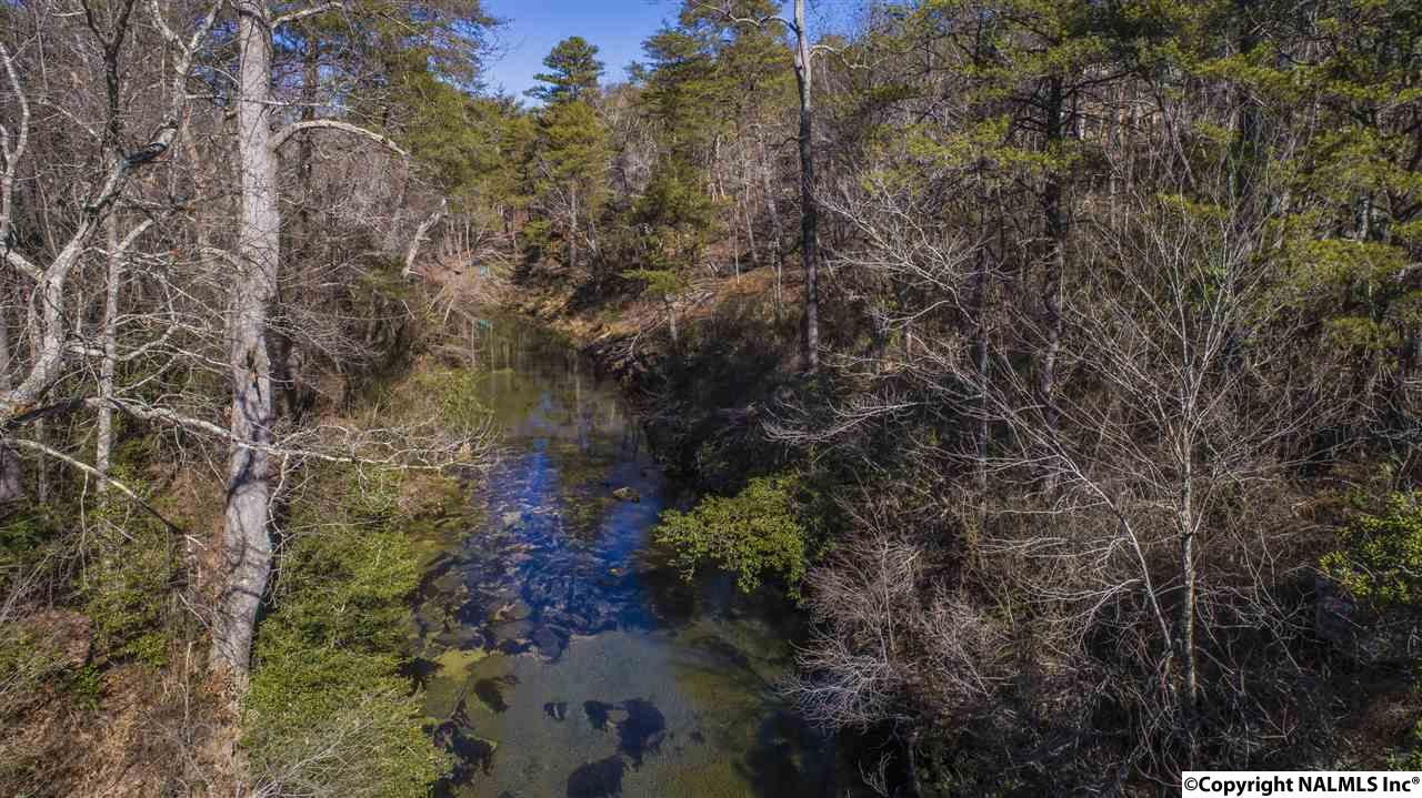 Photo of home for sale at Road 9006, Mentone AL