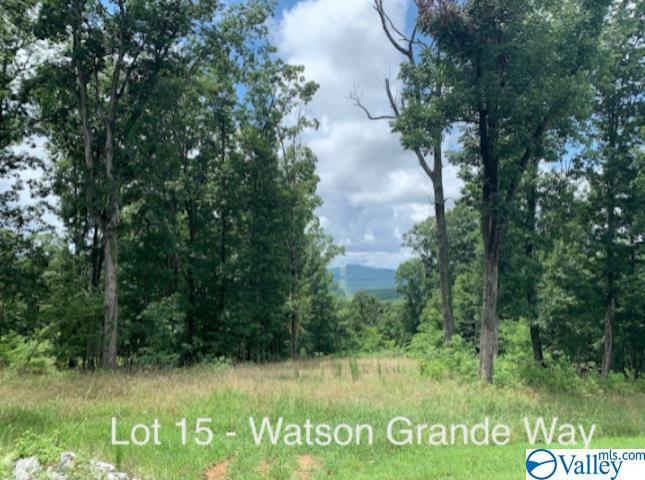 Photo of home for sale at Lot 15 Watson Grande Way, Owens Cross Roads AL