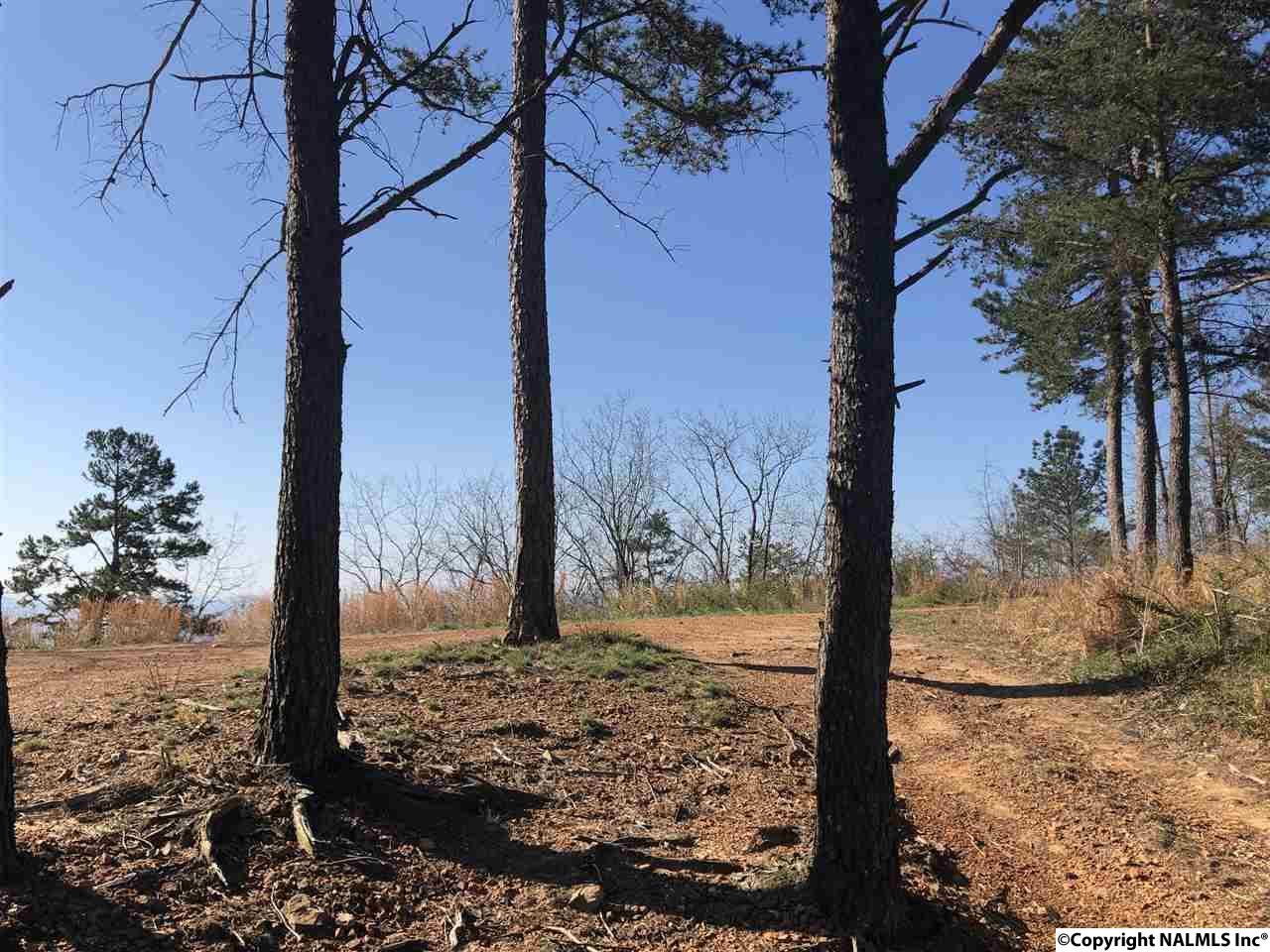 Photo of home for sale at Lot 1 County Road 70, Leesburg AL