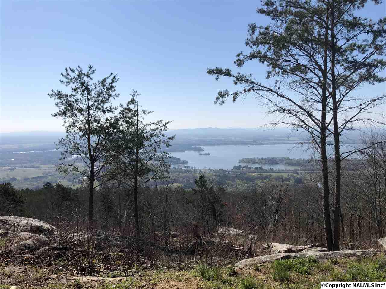 Photo of home for sale at LOT 6 County Road 70, Leesburg AL