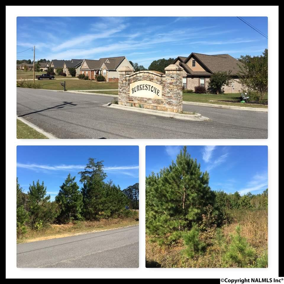 Photo of home for sale at LOT 58 Kayla Circle, Boaz AL
