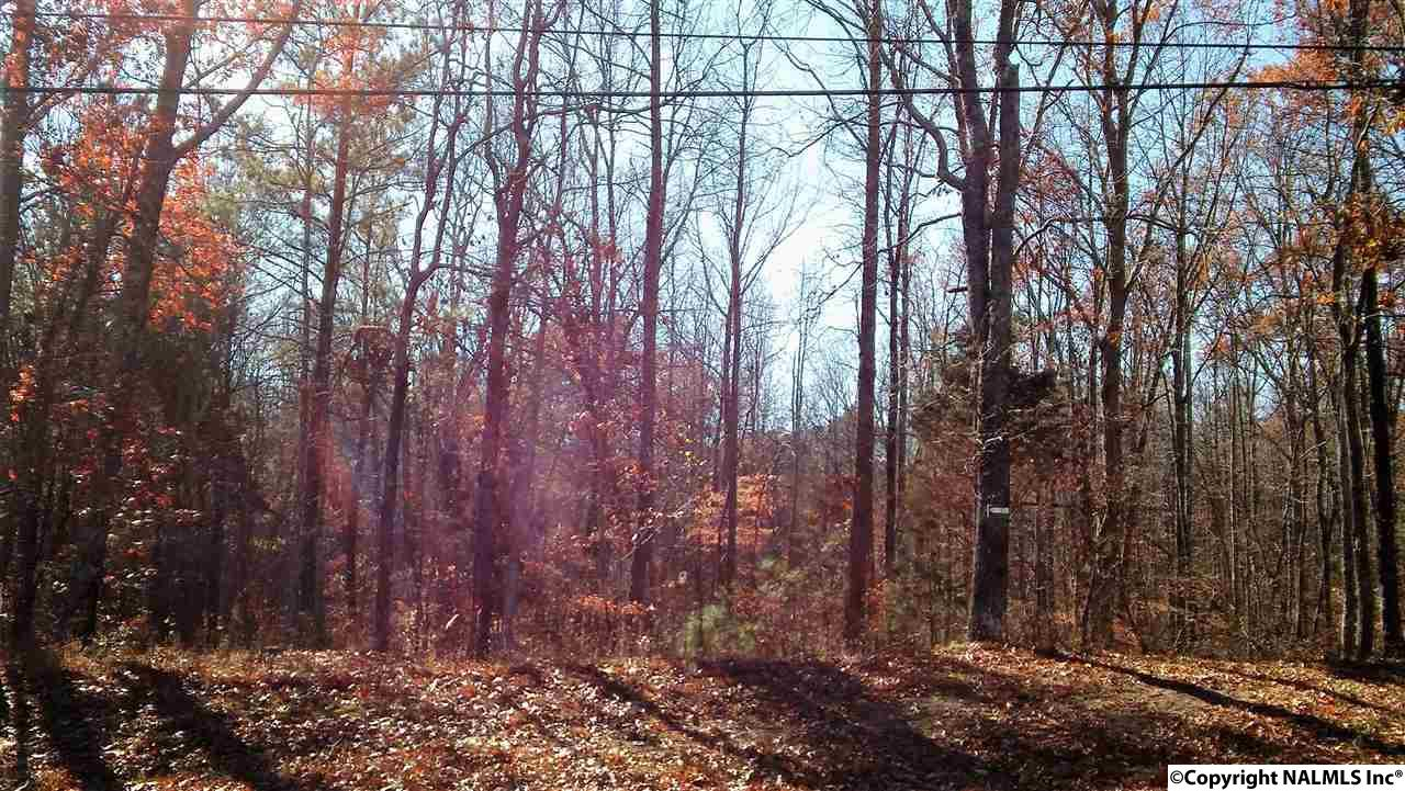 Photo of home for sale at Range Road, Gurley AL